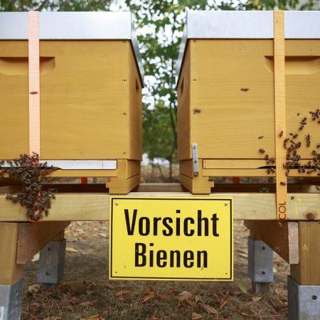 Müngersbees HonigConnection GAG koelnbeste