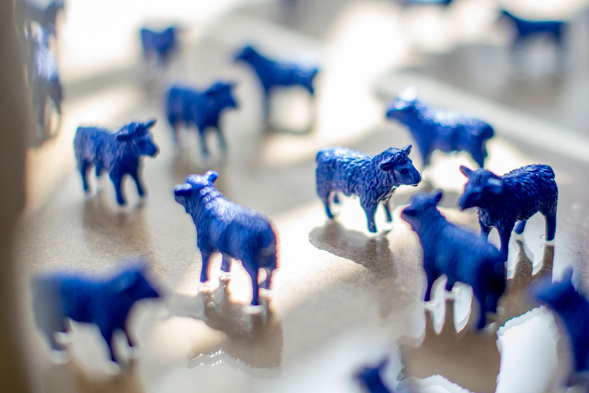Bertamaria Reetz Künstlerin Koeln Beste GAG Immobilien AG Blauschäferei Blaue Schafe Friedensschafe Jecke Hühner