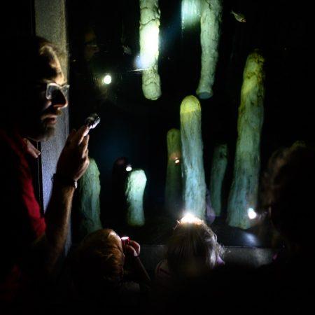 taschenlampenfuehrung-durch-das-aquarium-hoehlenfische