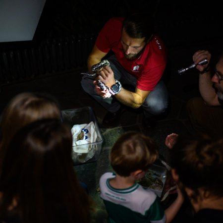 taschenlampenfuehrung-durch-das-aquarium-kleine-schlange-box