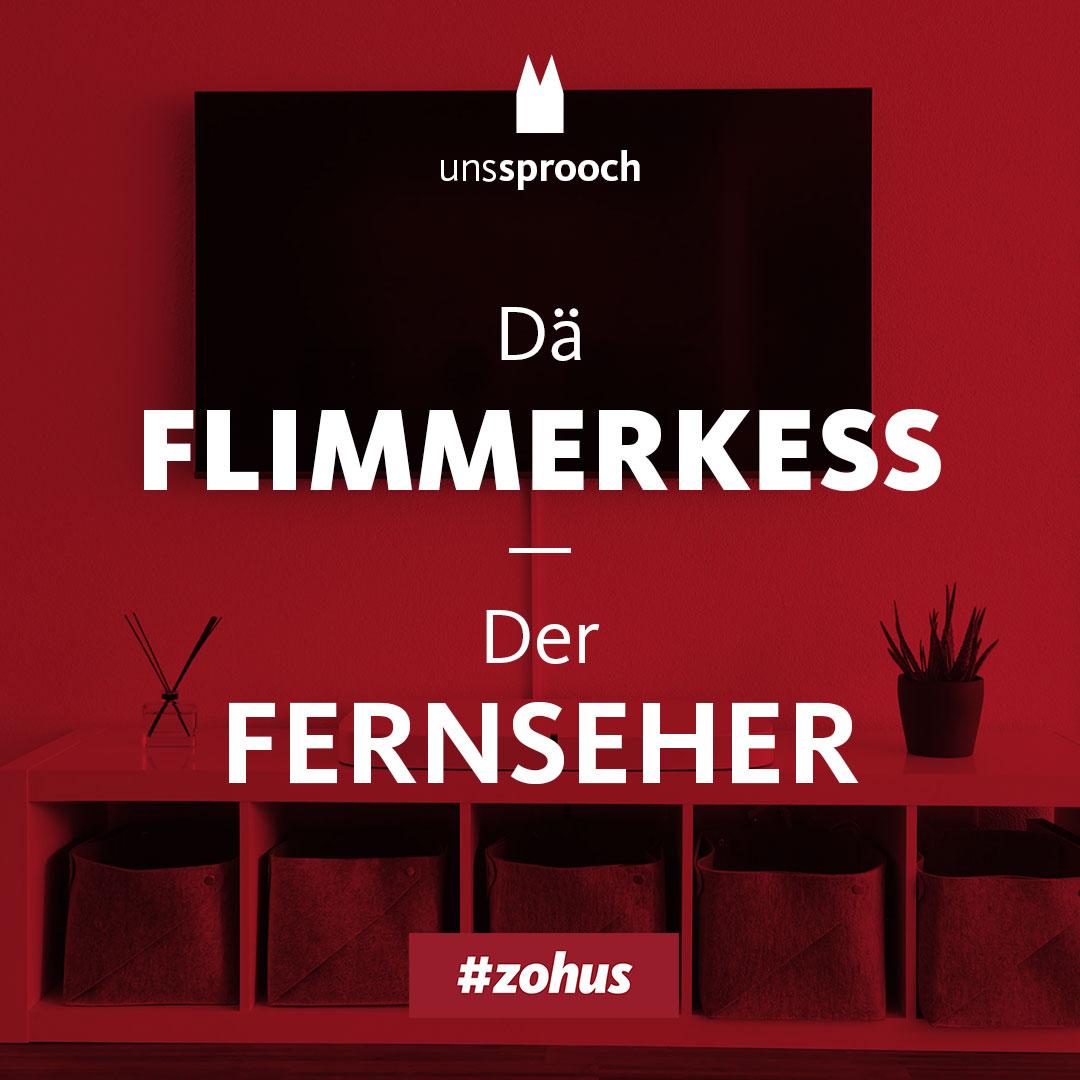 Insta_sprooch_Fernseher
