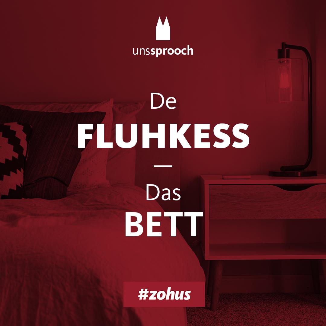 Köln Beste Uns Sprooch_fluhkess