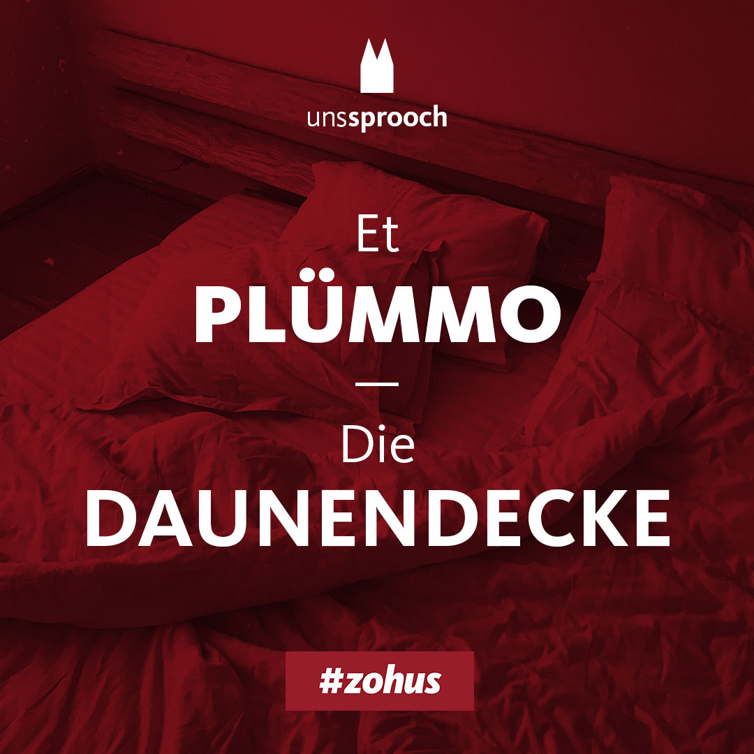 Köln Beste Uns Sprooch_pluemmo