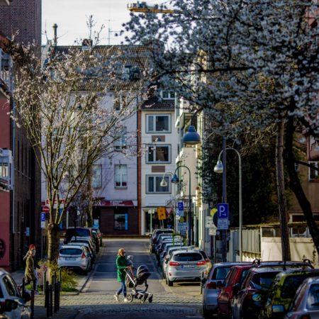 Wohin man auch blickt: Fast immer sieht man in Köln-Sülz einen Kinderwagen.
